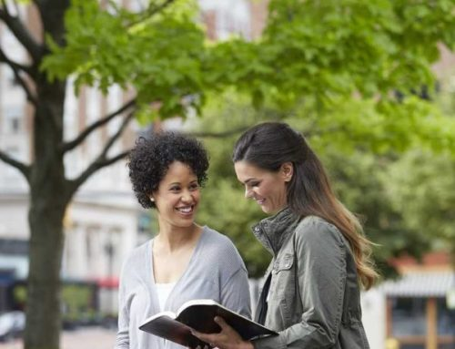 LifeWay to provide free Bibles to spur evangelism